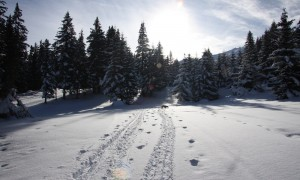 Fresh Snow Courchevel