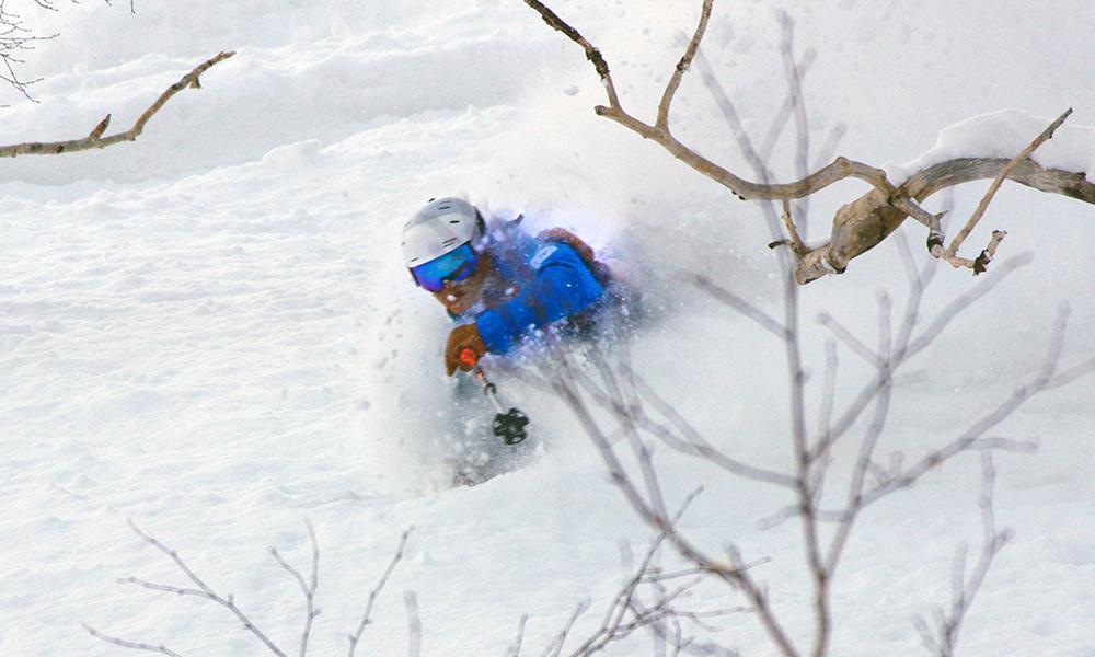 japan ski & dine